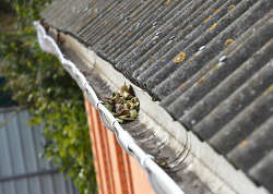 Asbestos roofing and guttering